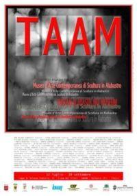 Manifesto TAAM 2008
