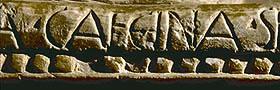 particolare di iscrizione lapidea riportante la scritta CAECINA